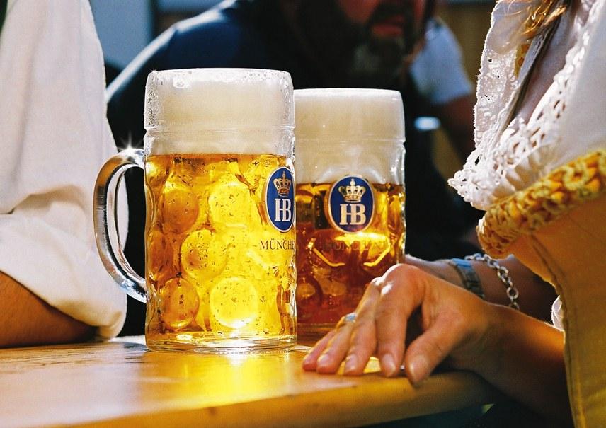 пиво hofbrau original