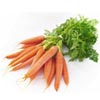 Морковь (лоток) Нидерланды. Опт и в розницу. Доставка