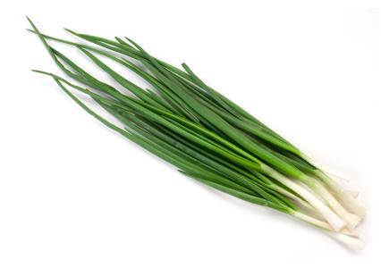 Лук зеленый в вакууме фас 1-2 кг. Опт и в розницу. Доставка
